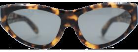 https://kamiriaglasses.com/frame-design/cat-eye/ray-ban-bl-onyx-wo-790